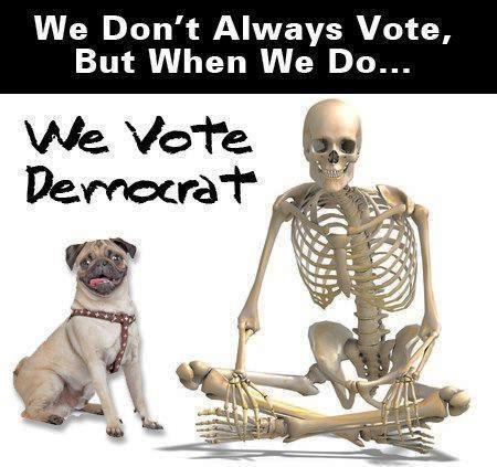 This image has an empty alt attribute; its file name is votedemocrat.jpg